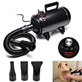 dicn 2800W Dog Hair Dryer Blaster Pet Grooming Hair Dryer High Velocity Motorbike Dryer Low Noise with 3 Nozzles 2.5M Hose Stepless Speed Gear Control, Black 1 Year Warranty