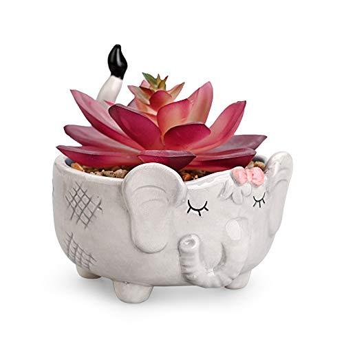 Mini Fake Ceramic Potted Succulents Artificial Plants  Animal Shaped Pot-Elephant Faux Succulents Plants for Home Office Shelf Decorations (Elephant) Royal_Z