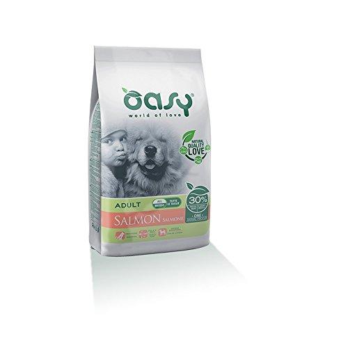 OASY Ein Protein trocken Hund 12kg Lachs - Hundetrockenfutter mono Protein