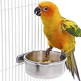 feeders for cockatiel