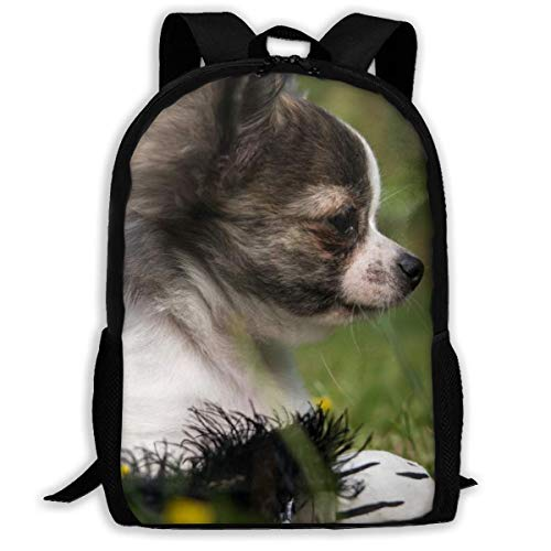 Student Bag, Chihuahua Dog Puppy Meadow reistassen, polyester schouder schooltassen voor volwassenen Outdoor Gym, 43x28x16cm