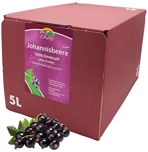 Bleichhof Schwarzer Johannisbeersaft - 100% Direktsaft, OHNE Zuckerzusatz, Bag-in-Box (1x 5l Saftbox)