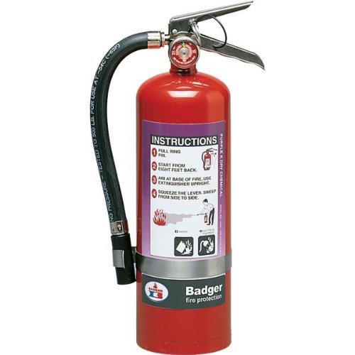 Badger Extra 2.5 lb Purple K Extinguisher w/Wall Hook - / (1 Unit)