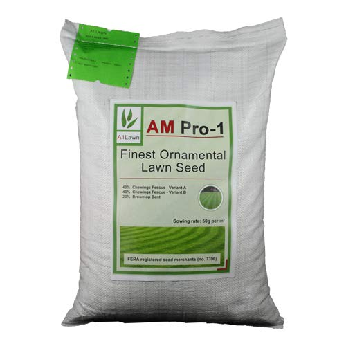 A1 Lawn AM Pro-1: Another Excellent Formal Lawn Seed