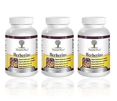 Premium Berberine HCl 500mg - Cardiovascular gastrointestinal Immune Weight Loss Support- Chromium Cinnamon by Norax Supplements