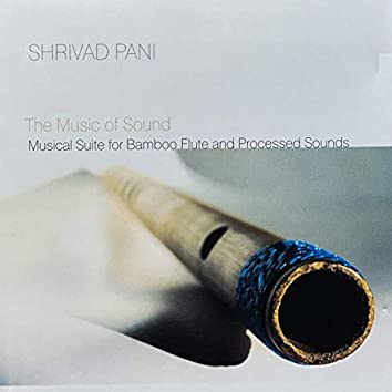 The Music Of Sound (Musical Suite For Bamboo Flute And Processed Sounds)