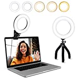 Video Conference Lighting Kit, Ring Light Clip on Laptop Monitor with 5 Dimmable Color & 5 Brightness Level for Webcam Lighting/Zoom Lighting/Remote Working/Self Broadcasting and Live Streaming, etc.