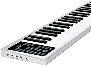 JJSFJH Intelligent 61-Key Piano Keyboard Portable Multifunction Electronic Piano Adult Professional Edition with Sustain P...
