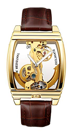 Luxury Transparent Mens Automatic Steampunk Skeleton Self Winding Mechanical Leather Dress Wristwatches (Brown Gold)