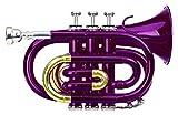 Classic Cantabile Brass TT-400 trompeta de bolsillo violeta