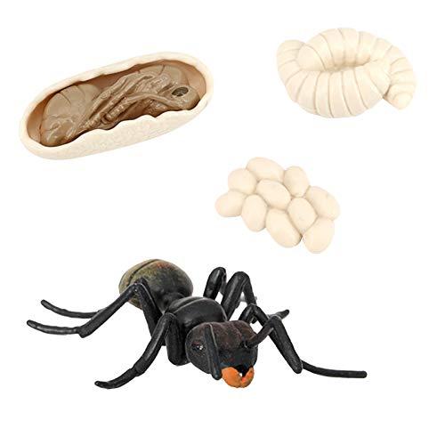 Hellery de Crecimiento de Hormiga Modelo de Ciclo de Vida de Insectos Juguete Cognitivo Educativo para Niños - Negro