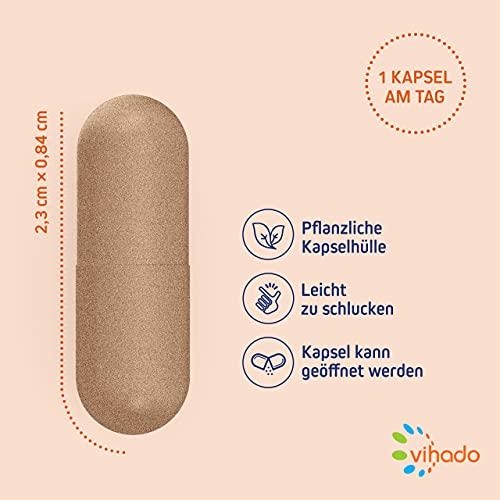 Vihado Vitamin-C hochdosiert – natürliches Vitamin C Kapseln (vegan) + Natur-Komplex mit Bioflavonoide, 30 Kapseln, 1er Pack (1 x 20,8 g) - 4
