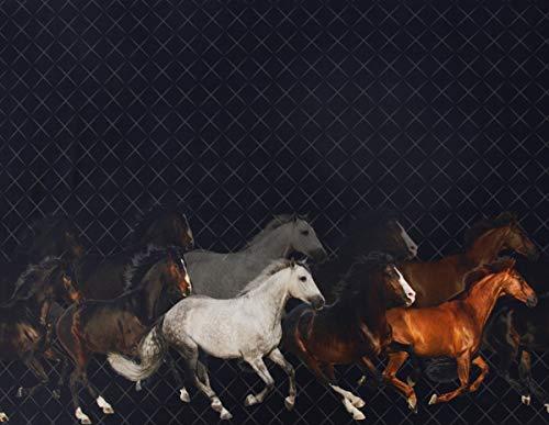 Stenzo Jersey Digitaldruck Bordüre Pferde schwarz braun beidseitig 1,50m Breite