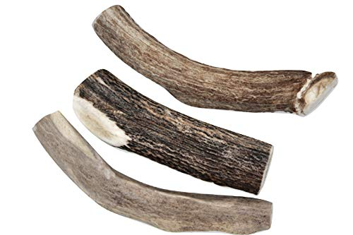 Deer Valley Dog Chews - XL & Thick 3 Pack, (More Than a Pound of Deer Antler Chew Treats for Big Dogs) 6-8 Inches (Long Lasting Dog Bone for Large Dogs and Aggressive Chewers) Odorless, Organic, USA
