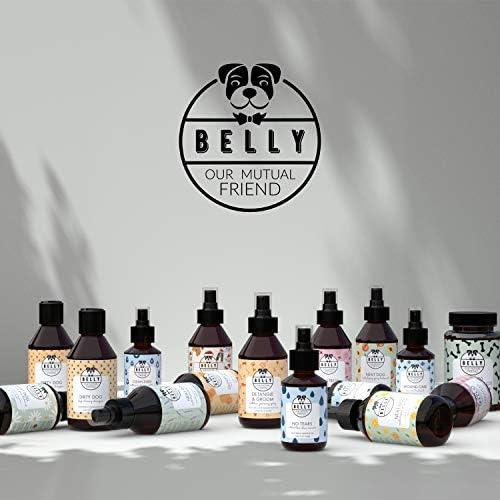 BELLY Spray Anti Puce Pour Chien - Solution Naturelle contre les Puces, Tiques et Moustiques - Soin Efficace et Longue Durée - À l' Huile d'Argan et Lavande - Alternative au Peigne Anti Puce, 250 ml
