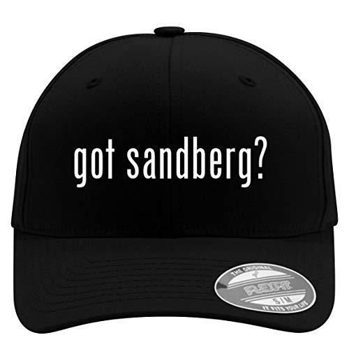 got Sandberg? - Flexfit Adult Men's Baseball Cap Hat, Black, Large/X-Large