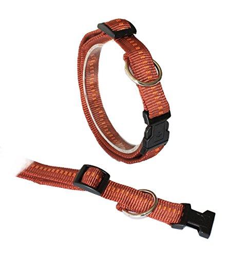 Koch G3302518 Nylon-Halsband gepolstert mit Klickverschluss stufenlos verstellbar, L, kupfer