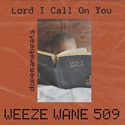 Weeze Wane 509