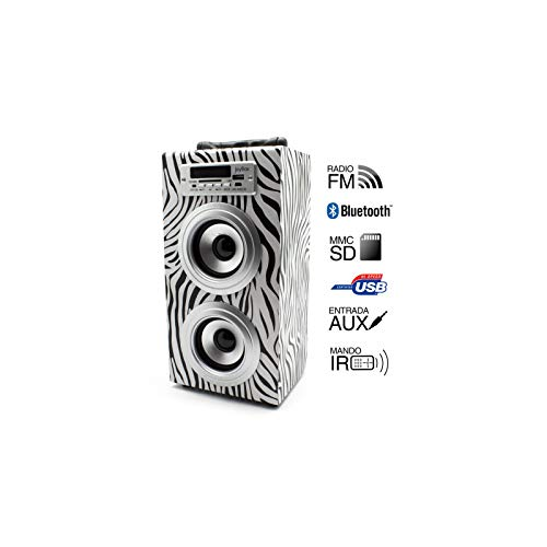 Biwond Joybox Zebra - Radio