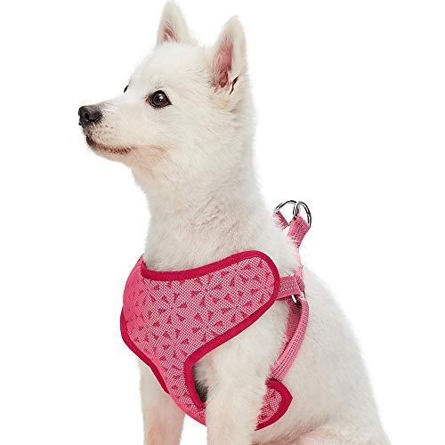 UMI. Essential Reflektierendes Hundegeschirr Gartenblumen, Rosa, Klein, verstellbares Geschirr für Hunde