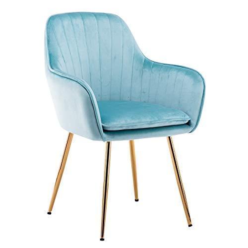 WSDSX Stuhl Modernes Design Esszimmerstühle Rücken Samt Wohnzimmer Wohnzimmer Liegestuhl Mit Kissen Robuste Metallbeine Für Wohnzimmer Küche Büro (Farbe: Blau)