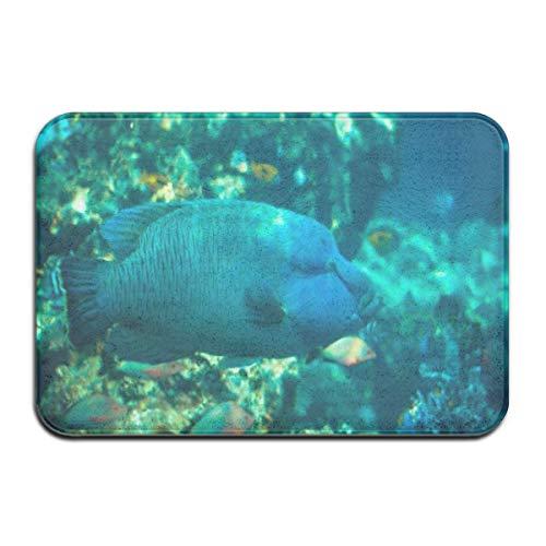 Vordertürmatte im Freien, Fußmatte im Inneren, Fußmatten im Innenbereich, Fußmatte im Freien , rutschfeste Fußmatte Napoleon Fisch im Okinawa Churaumi Aquarium