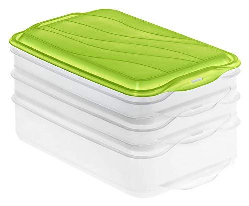 Rotho Rondo Foodcenter 3-teilige Vorratsdose, Kunststoff (BPA-frei), grün / transparent, 1x 1.35 Liter + 2x 0.75 Liter