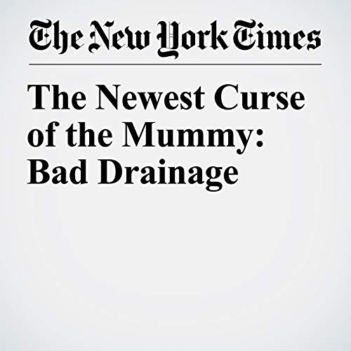 The Newest Curse of the Mummy: Bad Drainage copertina