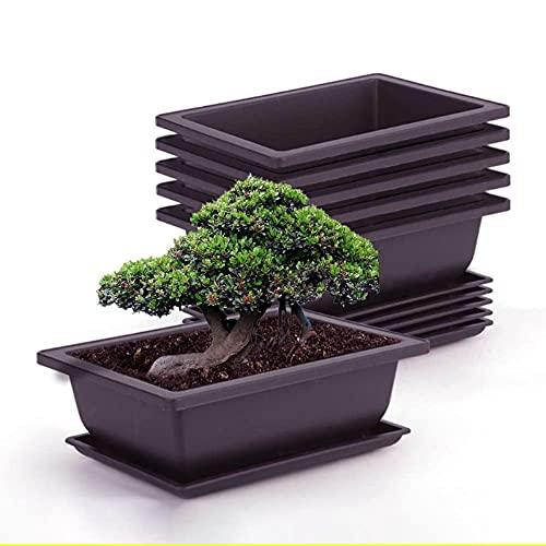 FAFAD - Vaso quadrato in plastica, 12 pezzi, vasi rettangolari da giardino con vassoi per interni, esterni, giardino, piante bonsai, aloe erbe, orchidee