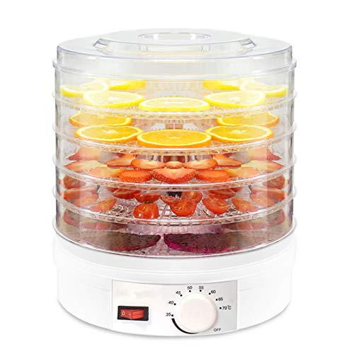 Best Bargain 5 Trays Temperature Control Food Dehydrator, Electric Digital Timer Fruit Preserver, Ho...