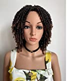 Blswaner Short Dreadlock Twist Wigs Ombre Brown Afro Twist Braided Bob Wig for Black Women Synthetic Fuax Locs Curly Wig …
