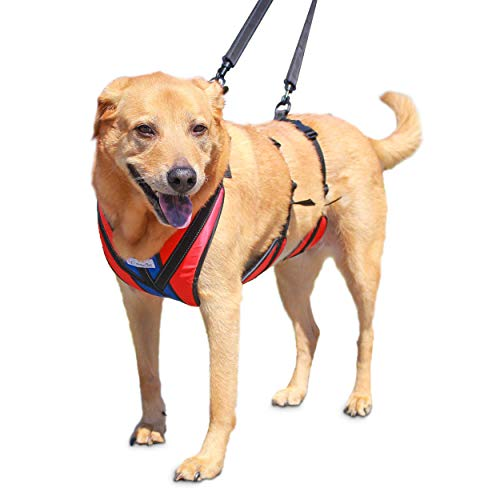 Walkin' Lift-n-Step Dog Harness for Full Body Support | Helps Dogs with Arthritis, Senior Dogs and Pets Recovering from Surgery
