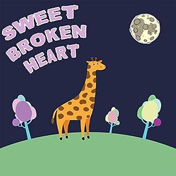 Sweet Broken Heart