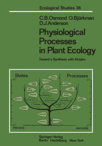 Physiological Processes in Plant Ecology: Toward a Synthesis with Atriplex (Ecological Studies (36), Band 36)