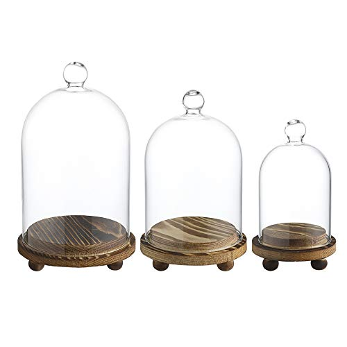 Whole Housewares Mini Glass Display Dome Cloche with Wood Base, Set of 3
