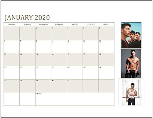 The Jonas Brothers 2020, calendario da appendere, formato A4, Nick, Joe, Kevin, Actor, Singer, visualizzazione mensile, caldo, lunedì a domenica