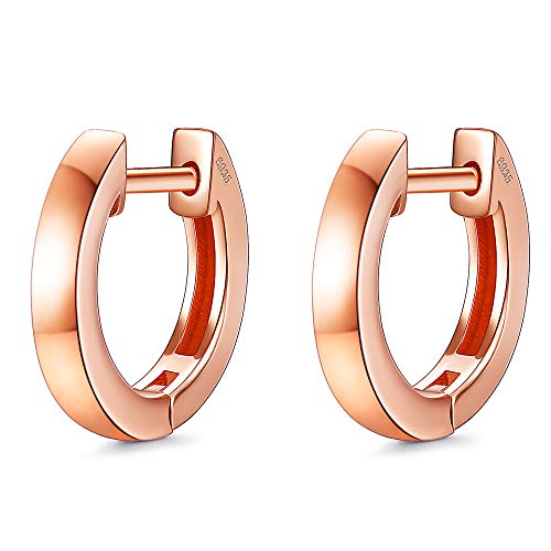 Sllaiss 925 Sterling Silver Hoop Earrings for Women Hinged Hoop Earrings White Gold 18K Gold Rose Gold Plated Circle Earrings