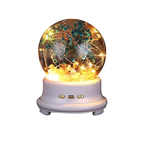 WZHZJ Lámpara de Botella LED conservada Flor en cúpula de Vidrio, luz de Noche Altavoz Bluetooth Lámpara de música Luz de Noche Altavoz (Color : C)