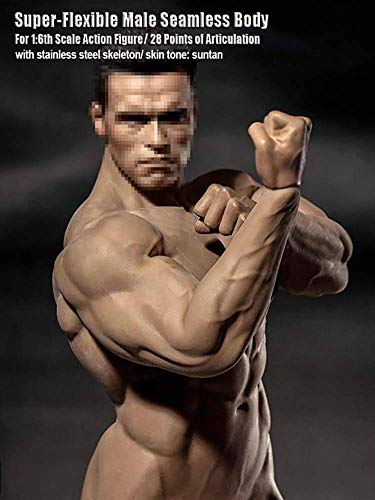 NEDTO 1/6 TBLeague Phicen Male Body Collection