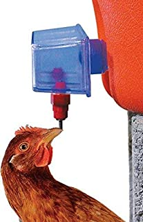Harris Farms Tap N Drink Waterer