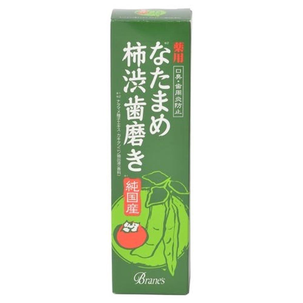 に沿ってバンラジエーター薬用なたまめ柿渋歯磨き 120g