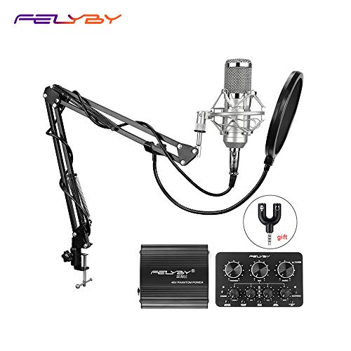 BM-800 Professional Condenser Microphone & Suspension Boom Scissor Arm Stand with XLR Cable and Mounting Clamp & Pop Filter & 48V Phantom Power Supply & Sound Card with Adapter Kit (Silver)