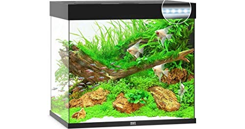 Juwel Lido 200 LED-Aquarium, Schwarz