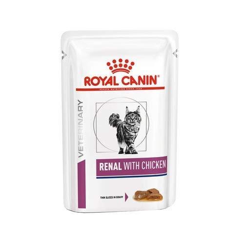 Royal Canin Renal Alimento gatto con pollo, 12 x 85 g
