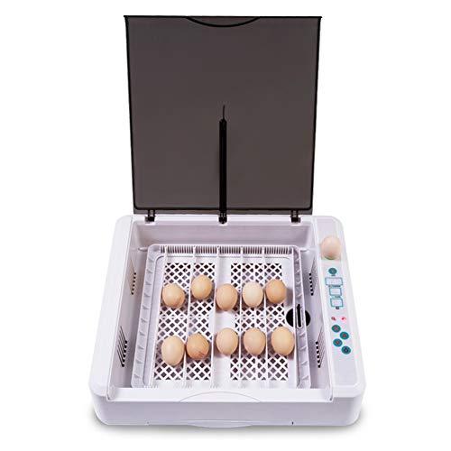 ZCXBHD Inkubatoren 36 Digital Eier Automatisch Brutapparat Feuchtigkeit Temperatur Steuerung Mit Testlicht Zum Hühner Enten Gans Wachtel Vögel