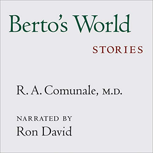 Couverture de Berto's World: Stories