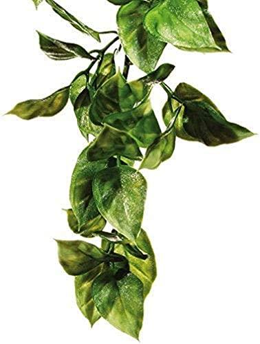 Exo Terra Exo Terra Terrarium Plant Amapallo Shrub Plastic Large pour Reptile/Amphibien