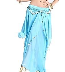 Light Blue Belly Dance Chiffon Skirt with Coins