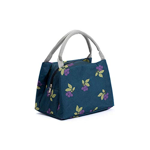 Arkmiido Small Lunch Bags Stylish Print, Multi-Function Lunch Bag/Tiffin Bag/Insulated Thermal Bag for Office Women/Kids (Blue)