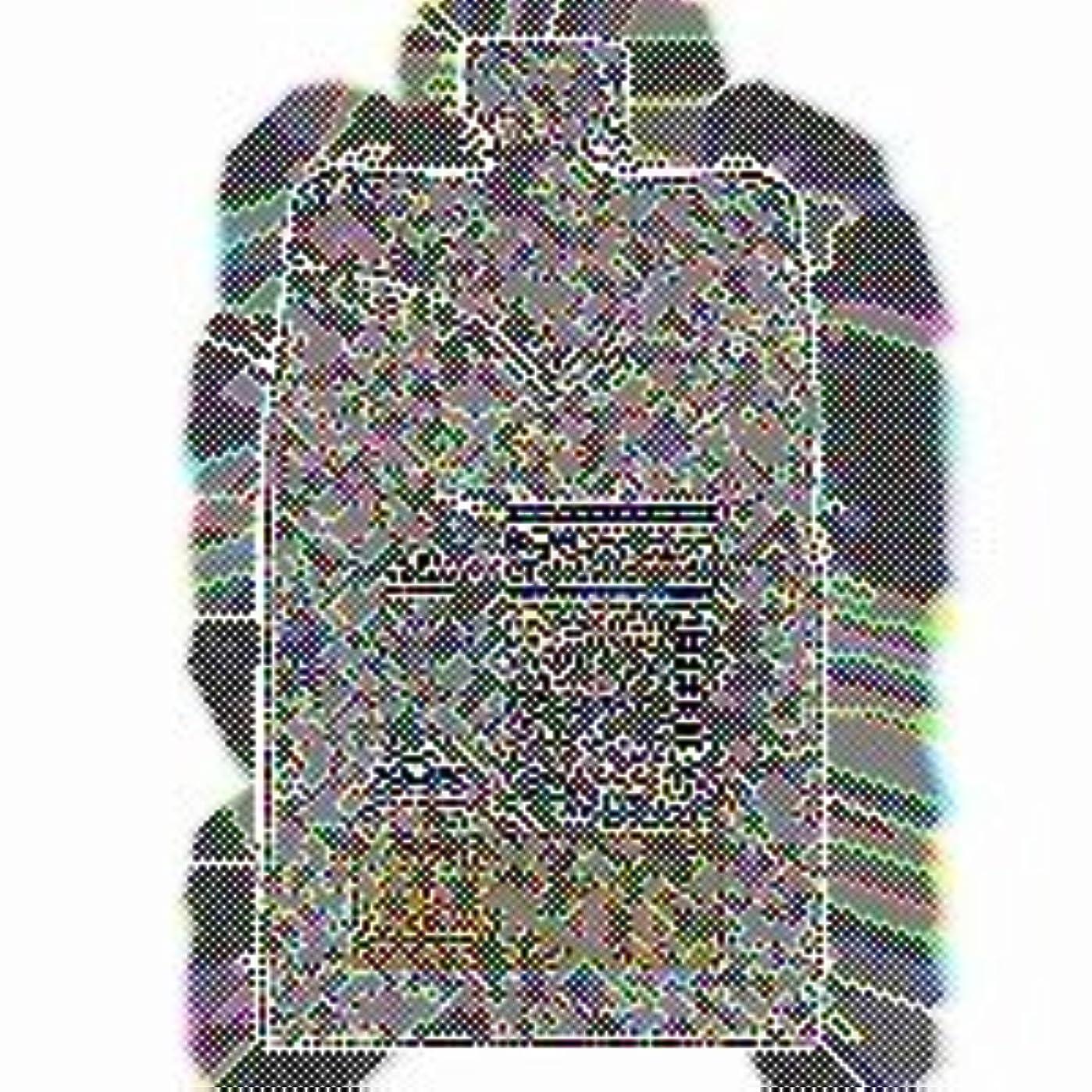 不名誉な光景幽霊【x4個セット】 シュワルツコフ シルエット ムースワックス 135g